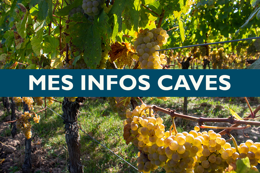 Mes infos caves